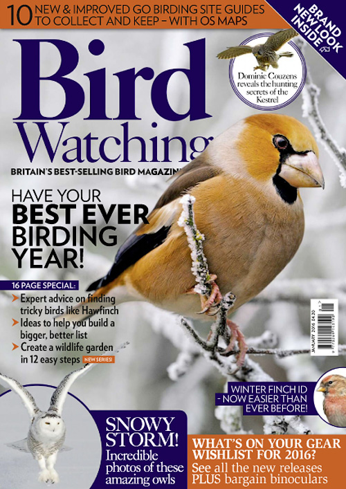 Bird Watching UK - January 2016