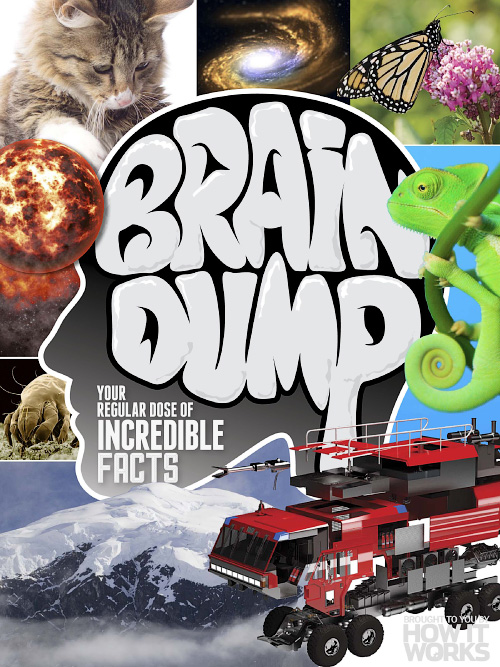How it Works Brain Dump - Issue 31, 2015