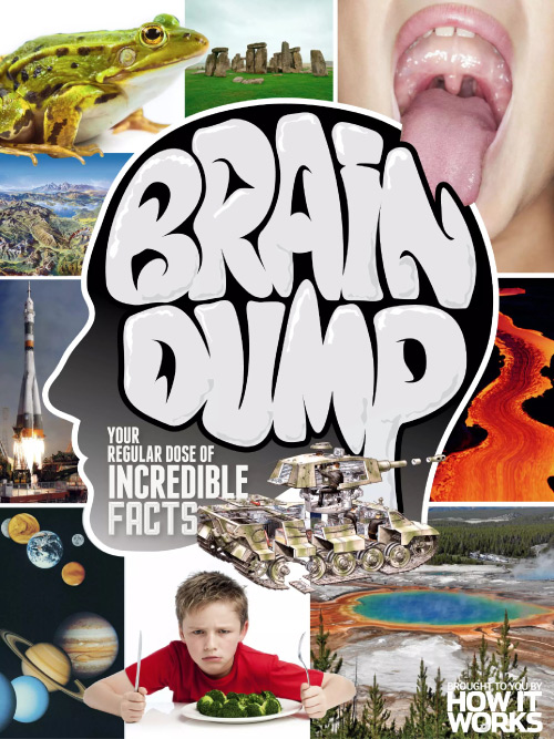 How It Works Brain Dump - Issue 34, 2016