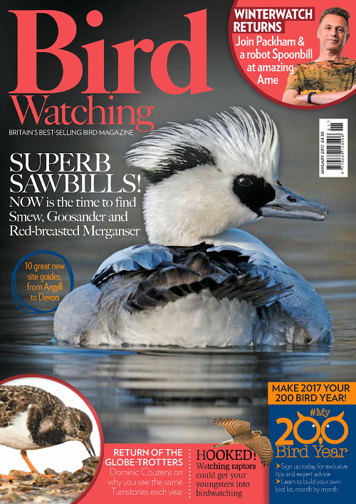 Bird Watching UK - January 2017