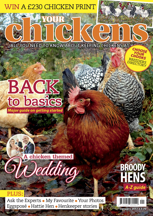 Your Chickens - January 2017