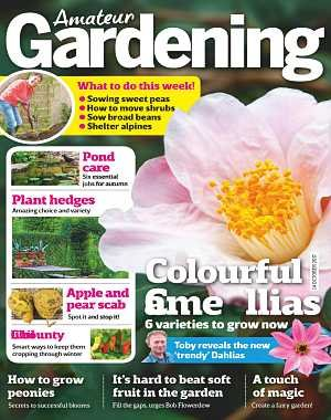 Amateur Gardening - 12 October 2017