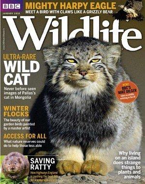 BBC Wildlife - January 2018