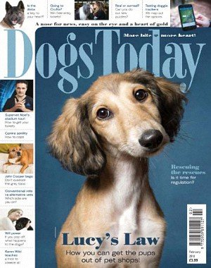 Dogs Today UK - February 2018