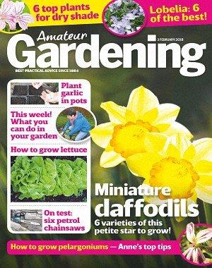 Amateur Gardening - 03 February 2018