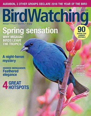 BirdWatching USA - March/April 2018