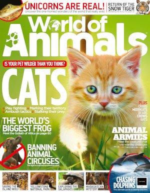 World of Animals UK - Issue 58, 2018