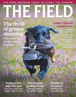 The Field - August 2018