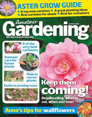 Amateur Gardening - 21 August 2018