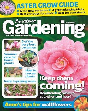 Amateur Gardening - 11 August 2018
