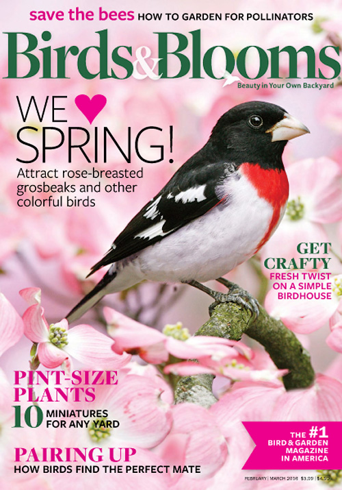 Birds & Blooms - February/March 2016