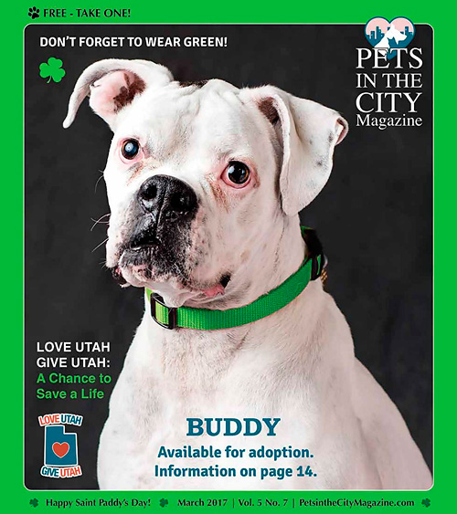 Pets In The City Magazine - March 2017