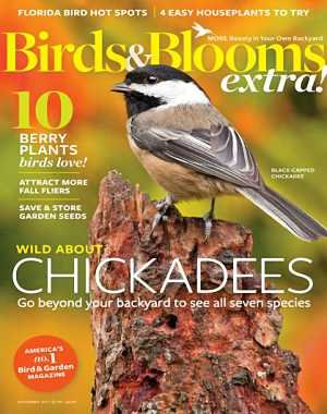 Birds and Blooms Extra - November 2017
