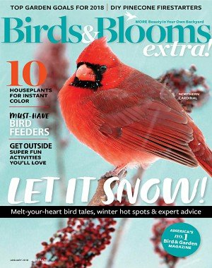 Birds and Blooms Extra - January 01, 2018
