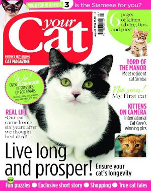 Your Cat – August 2018