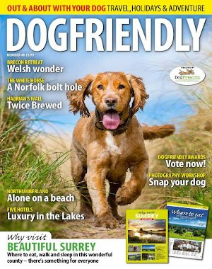 Dog Friendly – July/August 2018