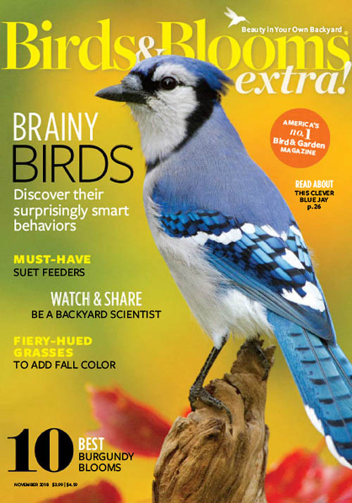 Birds & Blooms Extra - November 2018