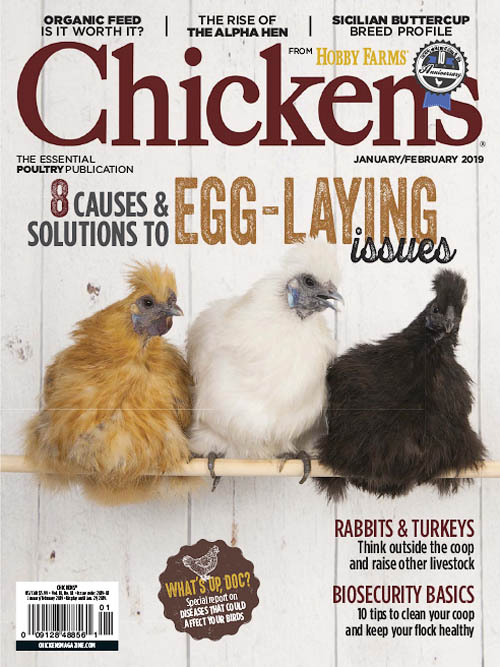 Chickens – January 2018