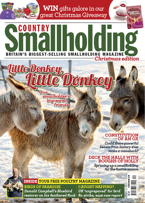 Country Smallholding – December 2018