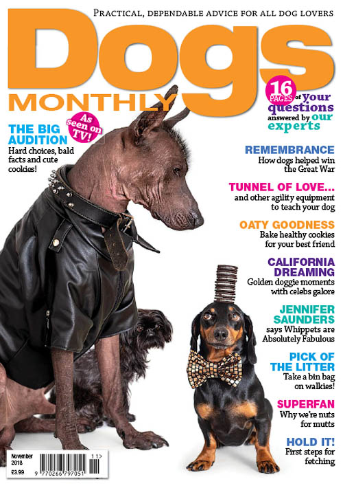 Dogs Monthly – November 2018
