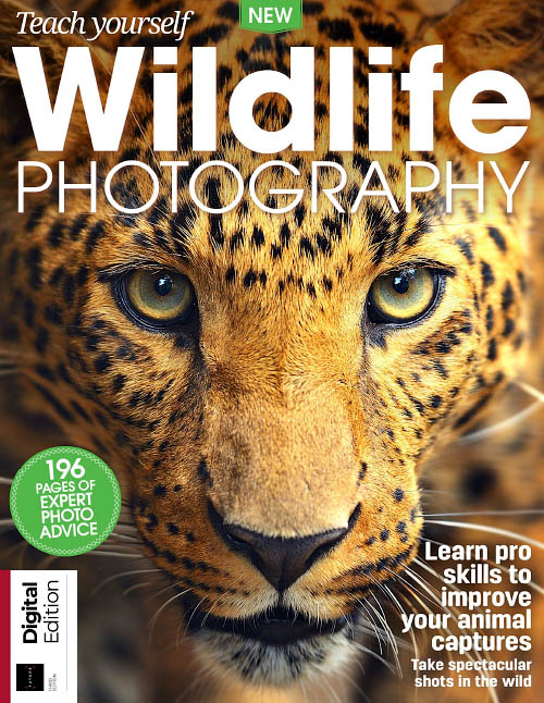 Teach Yourself Wildlife Photography Third Edition 2018
