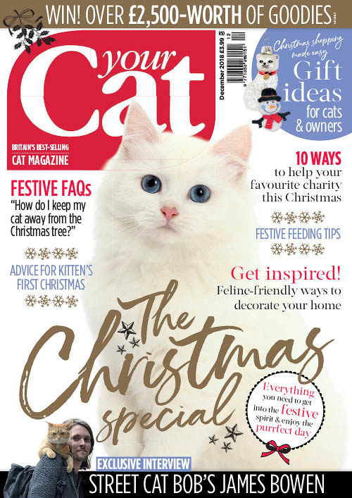 Your Cat – December 2018