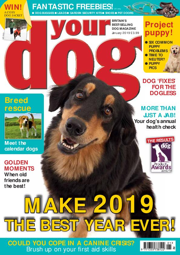 Your Dog – January 2019