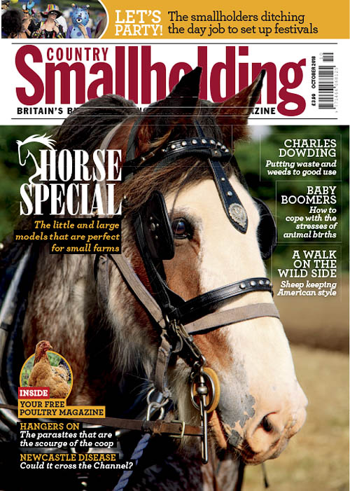 Country Smallholding – October 2018