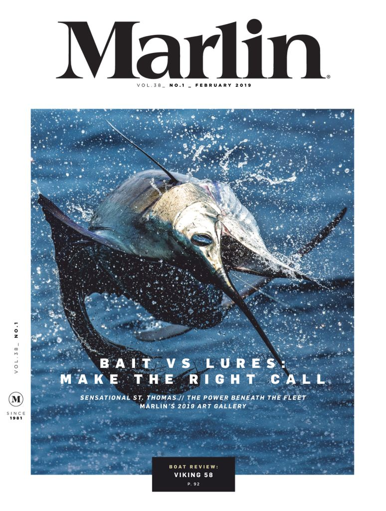 Marlin - January 2019