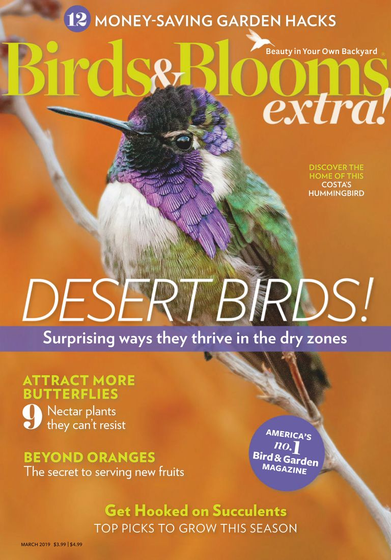 Birds and Blooms Extra - March 01, 2019