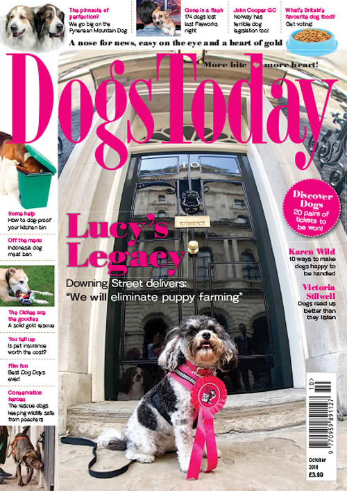 Dogs Today UK – October 2018