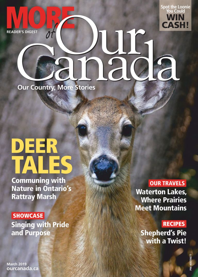More of Our Canada - March 01, 2019
