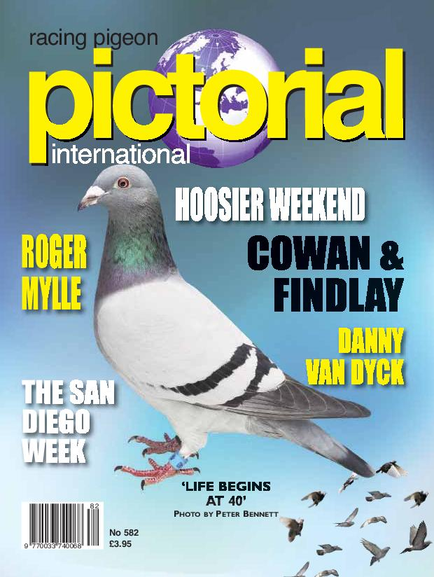 Racing Pigeon Pictorial International – February 2019