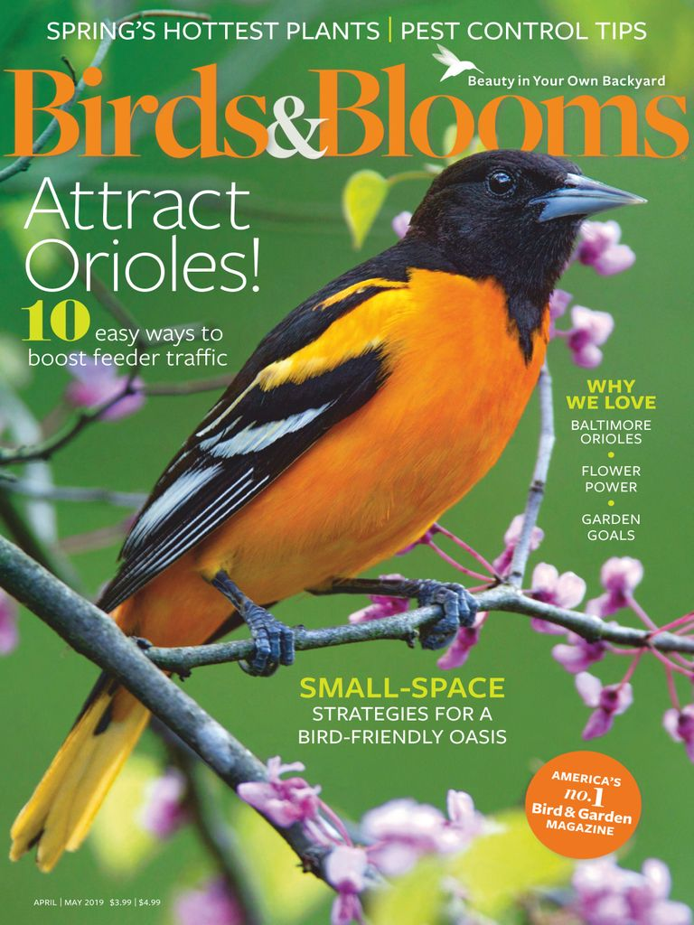 Birds & Blooms - April/May 2019