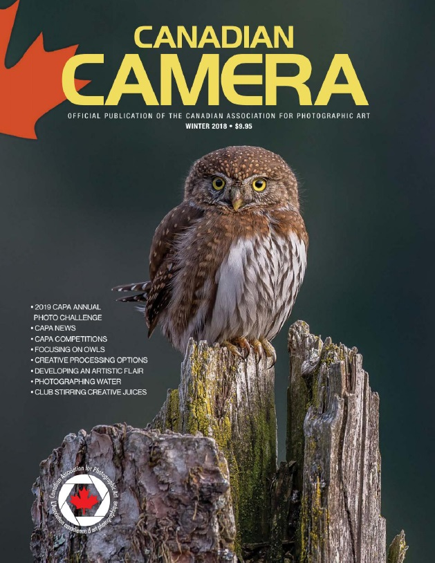 Canadian Camera - Winter 2018/2019